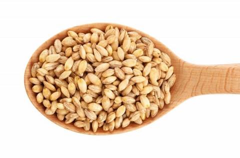 Barley Sauté