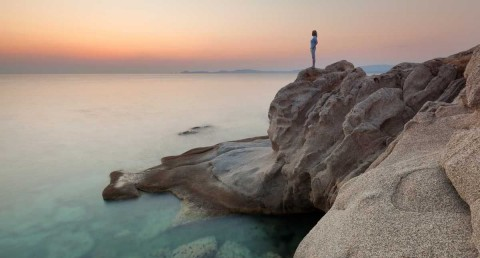 Making Sense of Life's Uncertainties