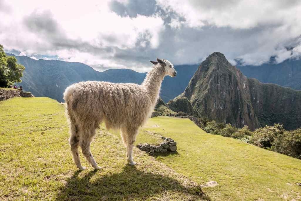History and Mystery of Peru's Sacred Grounds