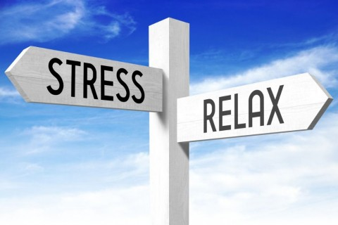 stress-relax-wooden-signpost-picture-id670563984