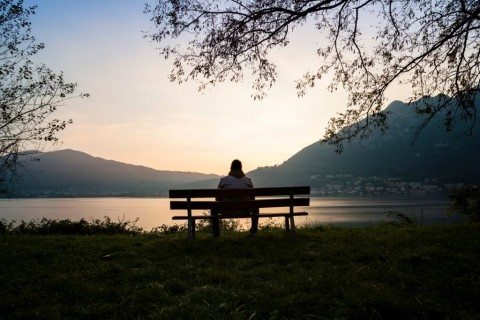 seated-on-a-wooden-bench-picture-id529574797