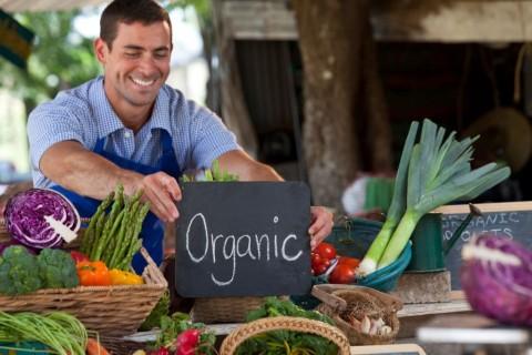 organic-farmer-picture-id165770892