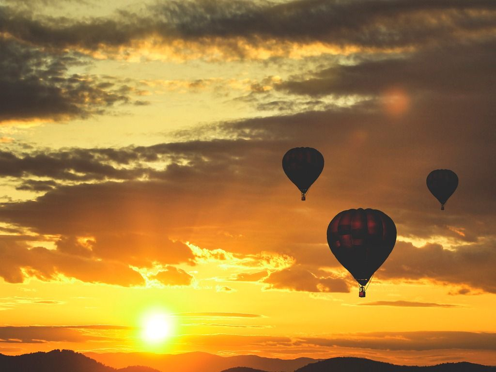 hot-air-balloons-picture-id500901404