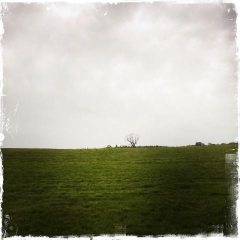 ©barbara-sinclair-our-tears-are-just-rain