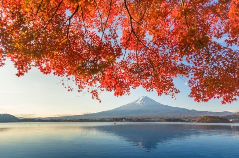 fuji-mountain-and-kawaguchiko-lake-in-morning-autumn-seasons-fuji-at-picture-id932561100