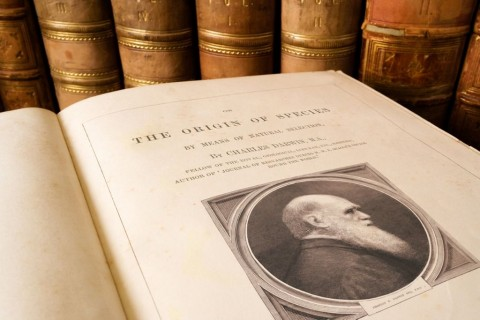 origin-of-species-charles-darwin-picture-id171584273