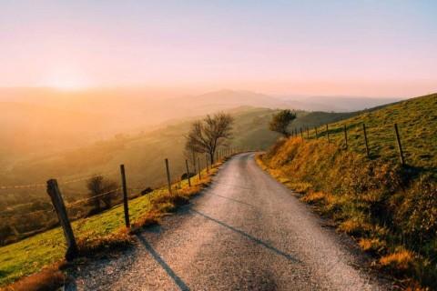 alongroad
