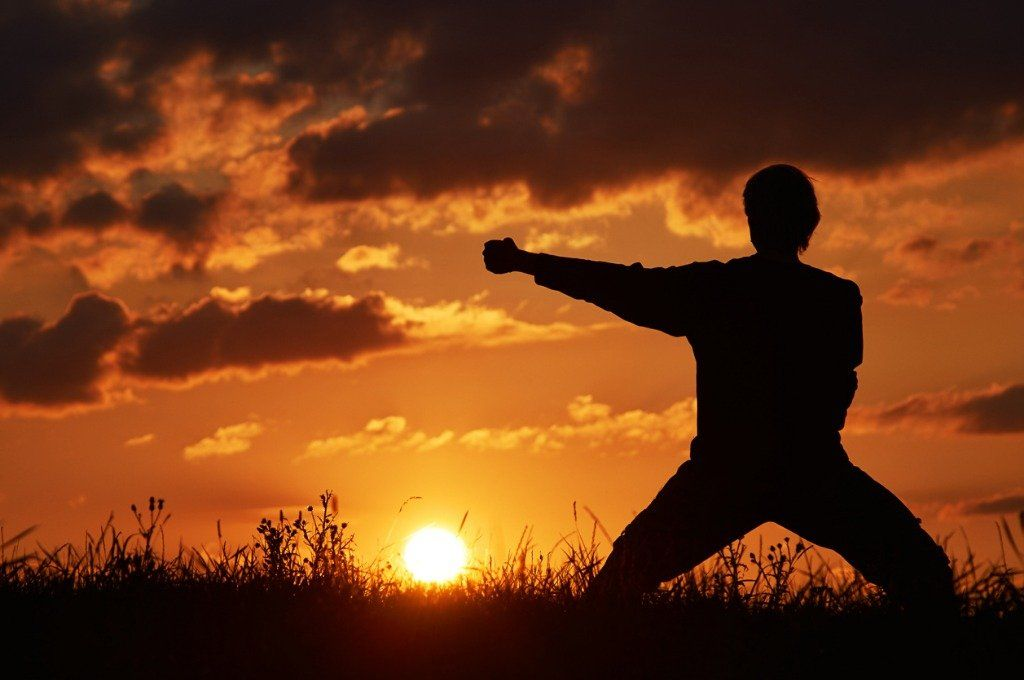 man-practicing-karate-on-the-grassy-horizon-at-sunset-picture-id515148008