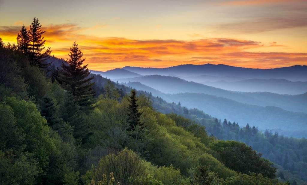 Deep in the Great Smoky Mountains…