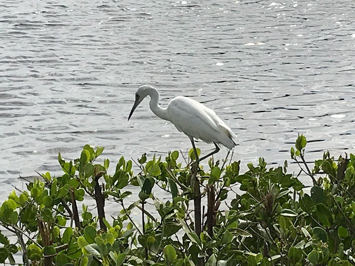 You Can't GPS God