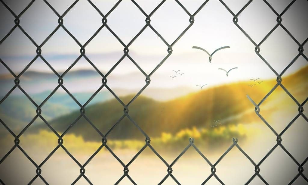 Desire: A Current of Homecoming