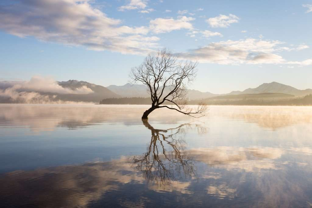The Gift of Silence: Quieting the Mind