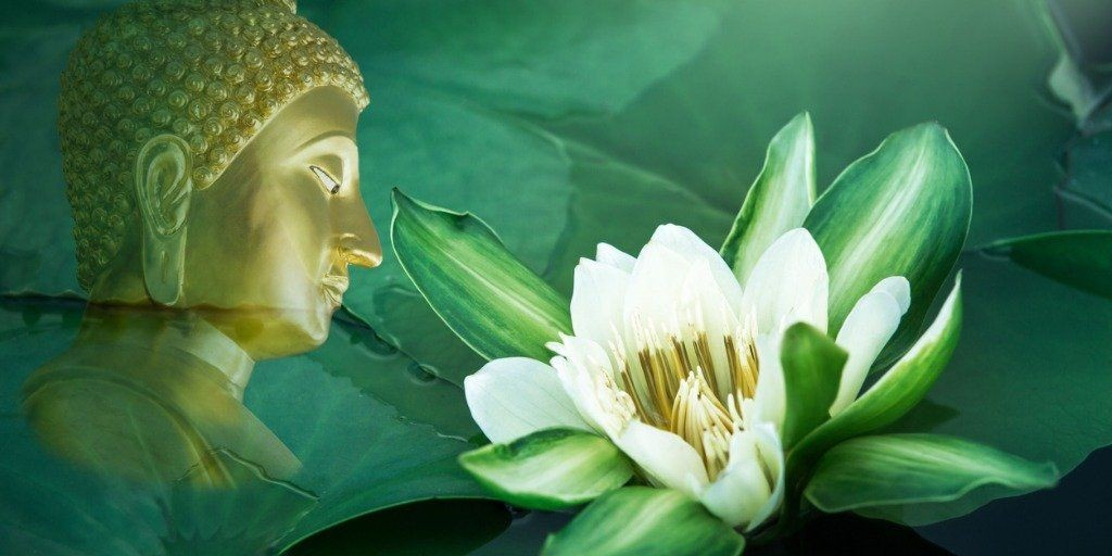 Finding Balance Between Mind and Heart on the Path to Liberation