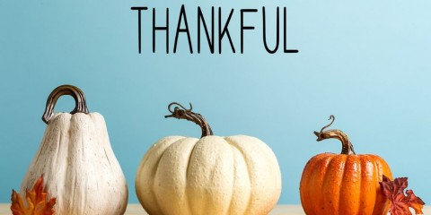 thankful-message-with-pumpkins-picture-id1173881424