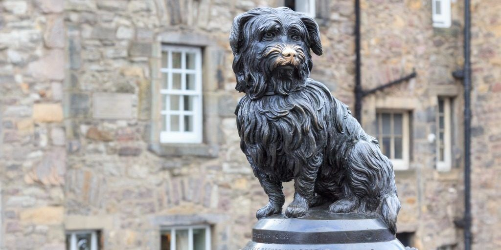 sculpture-of-greyfriars-bobby-picture-id532530965