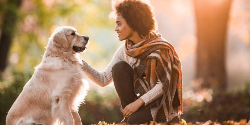 10 Ways to Converse with Your Pet