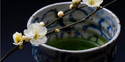 early-spring-plum-blossoms-matcha-and-tea-bowls-with-a-wabisabi-picture-id1216897409
