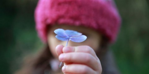 child-holding-a-flower-picture-id157582199