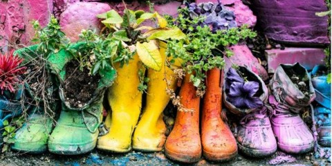flowers-and-plants-planted-in-old-rubber-boots-photographic-effects-picture-id1162483361