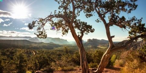 scenic-landscape-vista-view-over-sedona-arizona-usa-picture-id1169257769