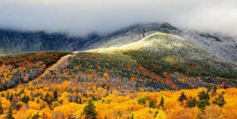 autumn-foliage-and-snow