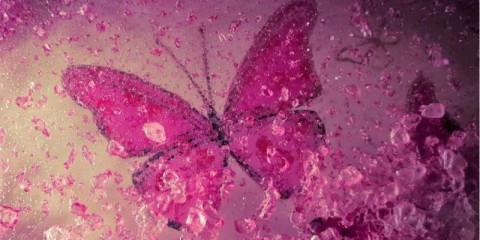 butterflycells