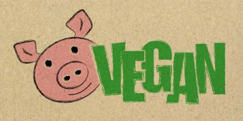 vegan-picture